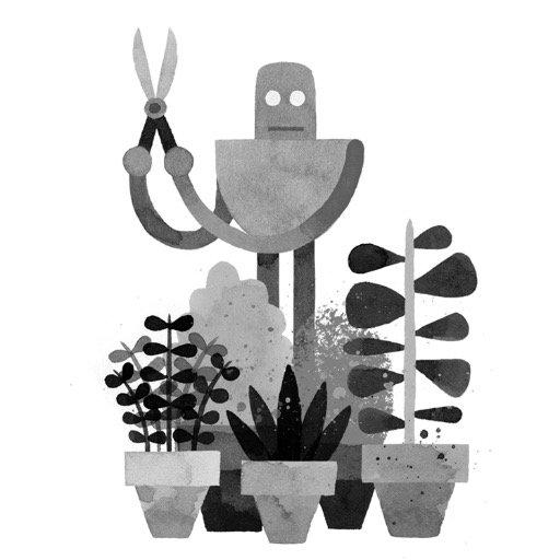 WildRobot2.jpg